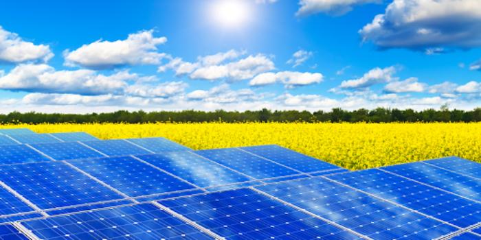nước rửa tấm pin năng lượng mặt trời Đắk Lắk 1